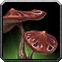 Fool's Cap Icon