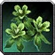 Silkweed Icon