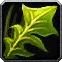 Silverleaf Icon