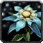 Snow Lily Icon