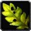 Stranglekelp Icon