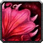 Talandra's Rose Icon
