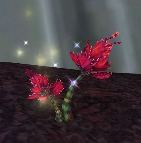 Talandra's Rose Screenshot
